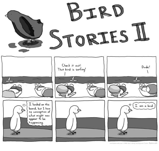 2008-12-18-BirdStoriesII