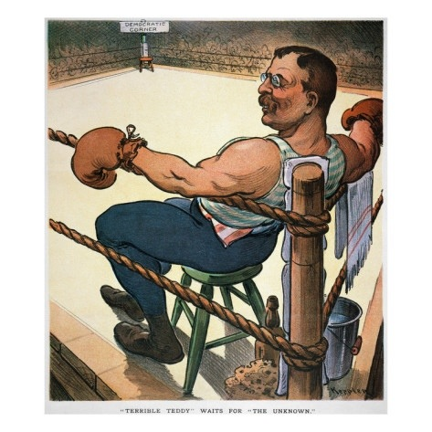 """theodore roosevelts square deal essay Theodore roosevelt and woodrow wilson  need essay sample on theodore roosevelt and woodrow  although he was infamous for his """"square deal,"""" taking on ."""